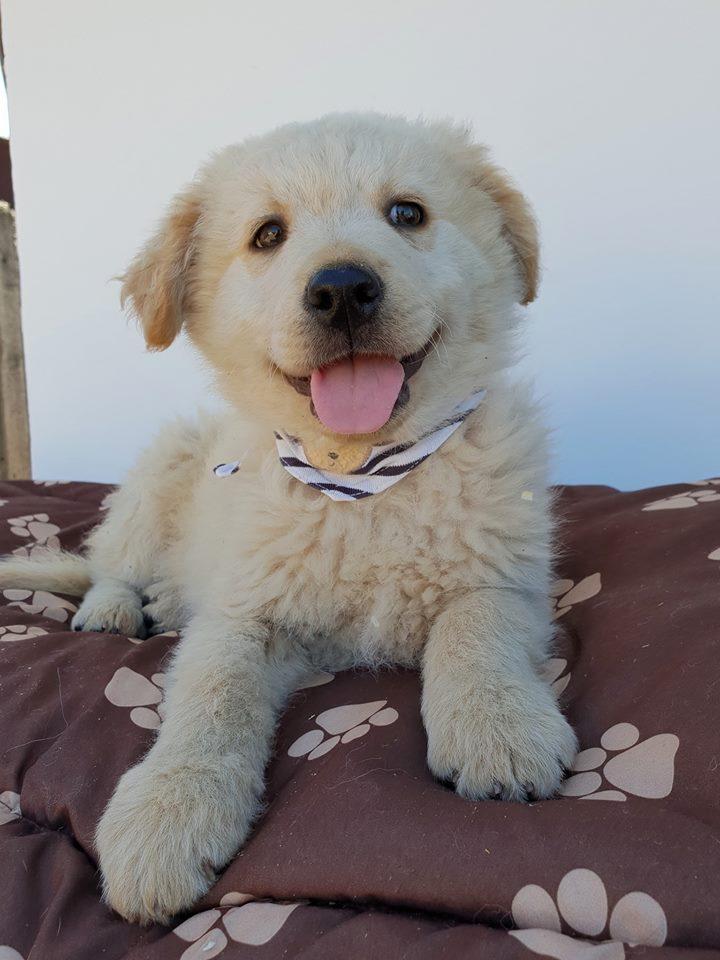 JACK – ca. 2,5 Monate