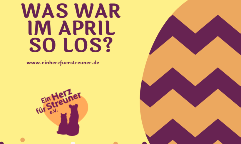 Was war im April so los?