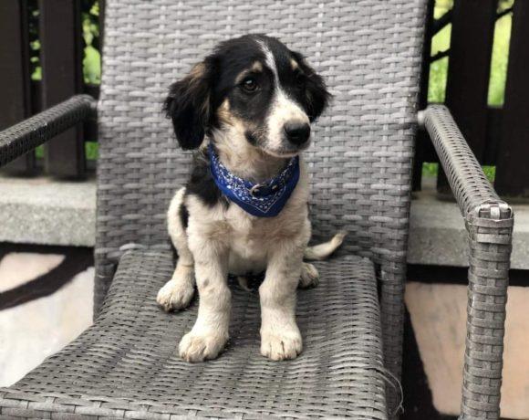 EMIL – ca. 4 Monate