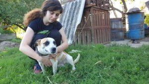 Kajal, Kettenhund, wurde von einem Tierheim übernommen