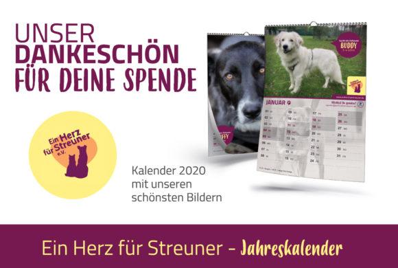 Der Streuner-Kalender für 2020 ist da!