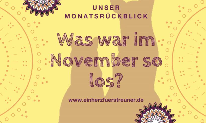 Was war im November so los?