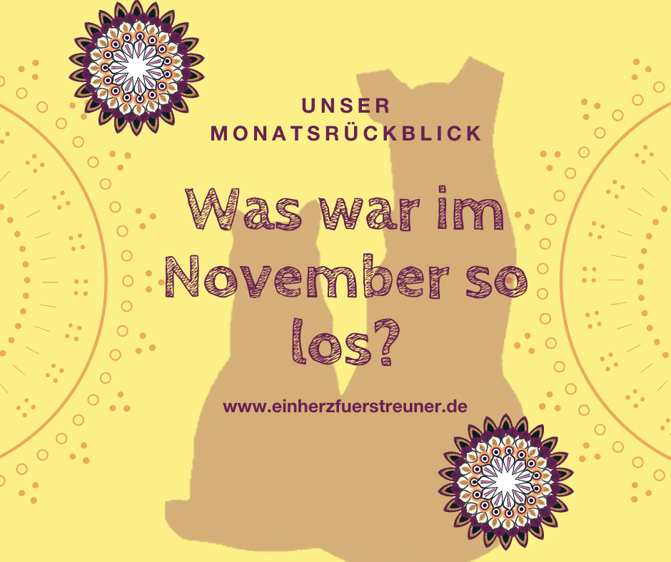 Was war im November so los?