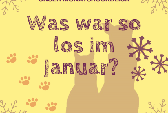 Was war so los im Januar?