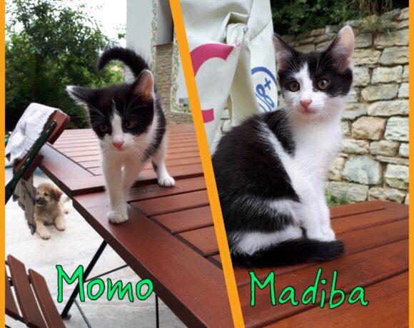 MOMO&MADIBA – ca. 2 Monate