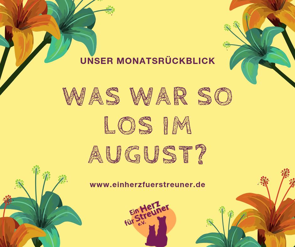 Was war im August so los?