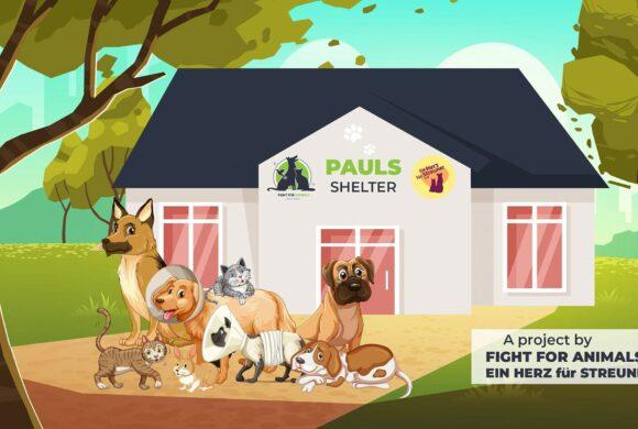 Ein neuer Meilenstein – Paul's Shelter!