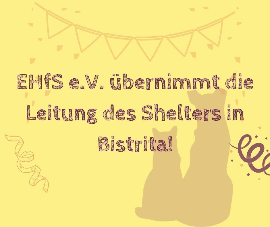 Wir übernehmen die Leitung des Shelters in Bistrita