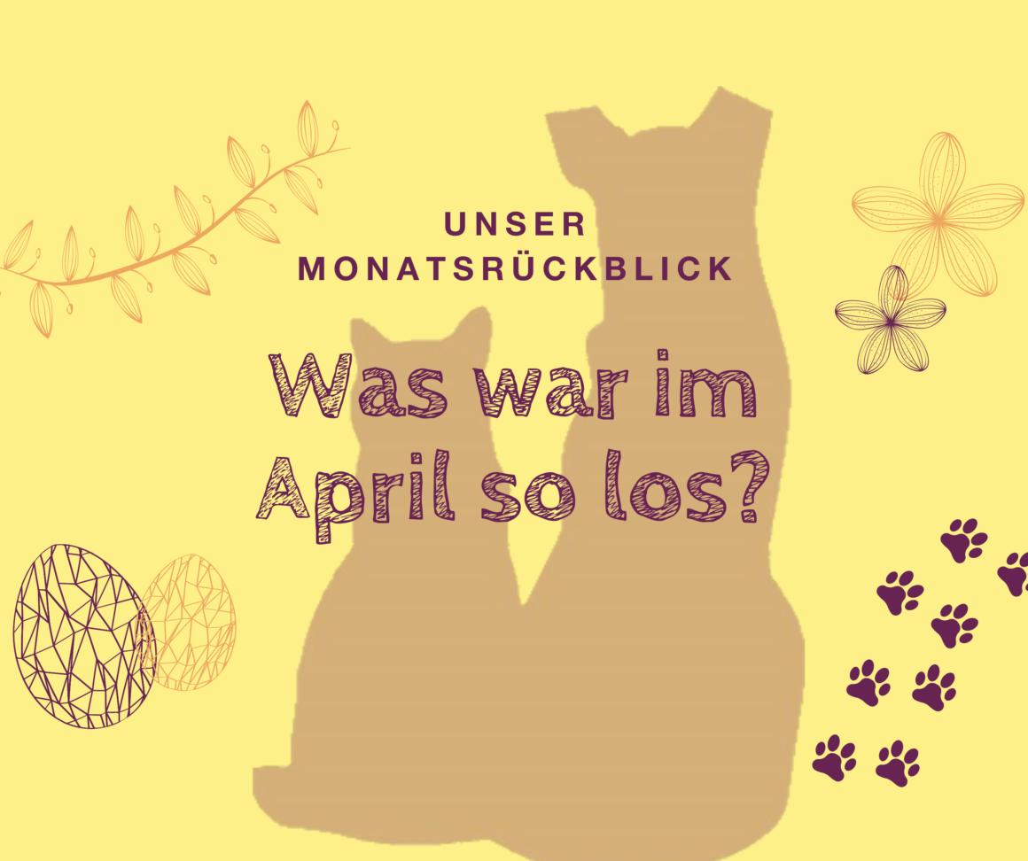 Monatsrückblick April